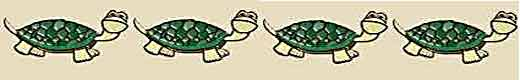 amulettes tortues