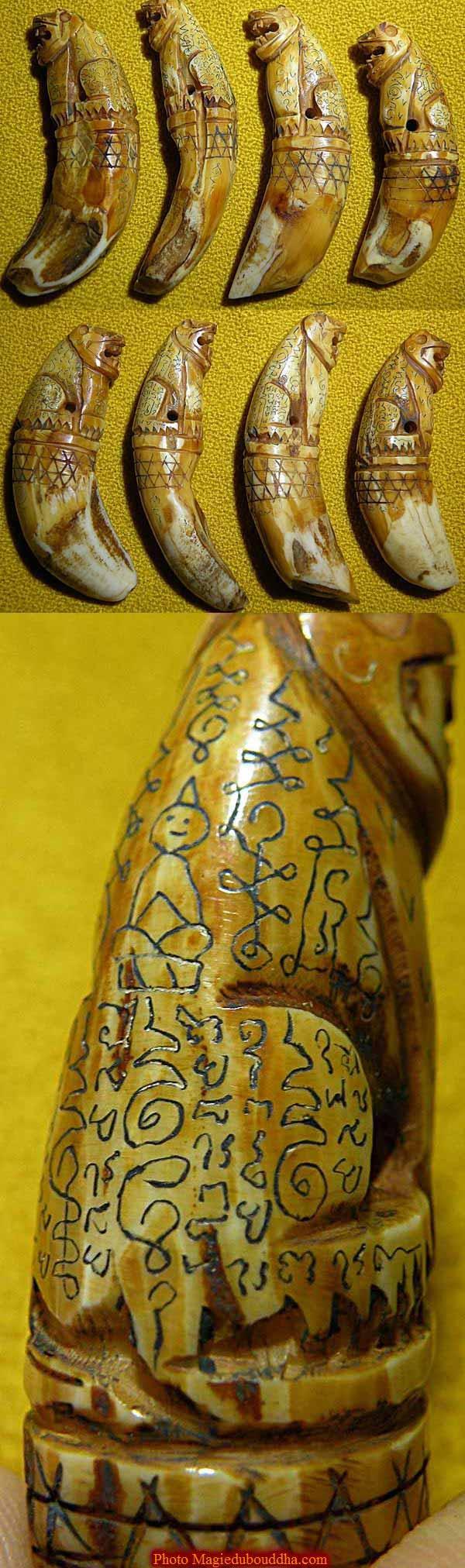 amulette tigre dent de singe