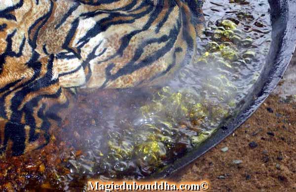 boiling oil lersi ritual