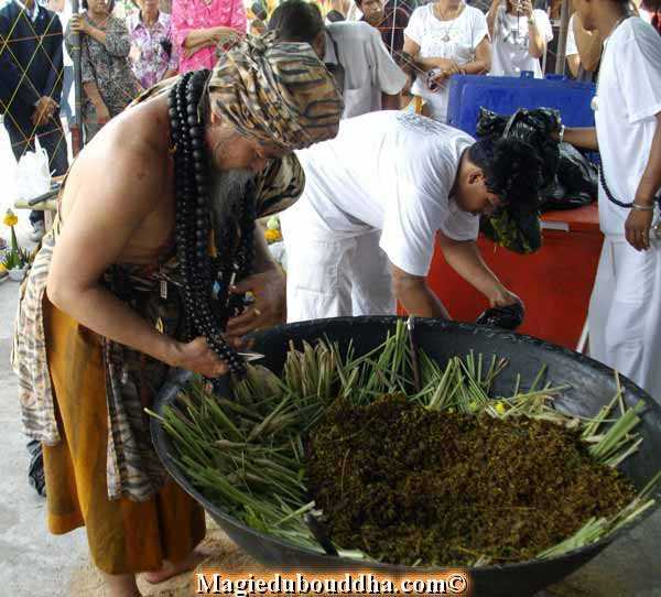 thai herbs used in lersi ritual
