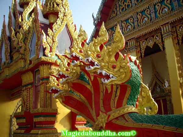 nagas de temple thai