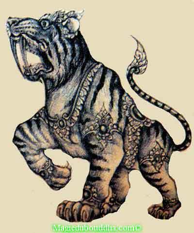 tigre magique thailande