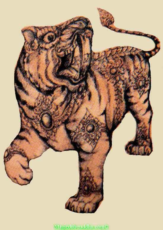 yant tigre